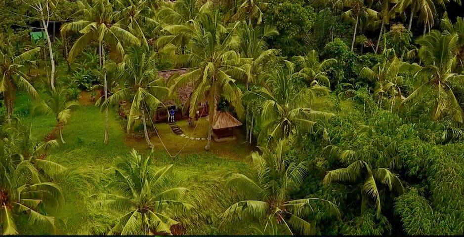 House with astonishing views - Tegallalang