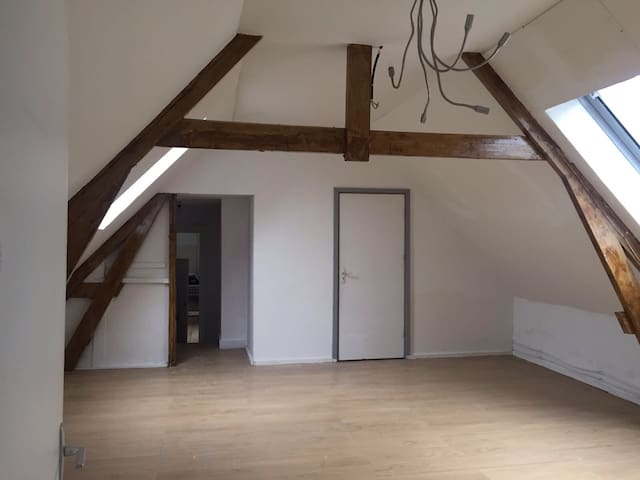 Charming House with Loft Apartment - Roosendaal - Daire