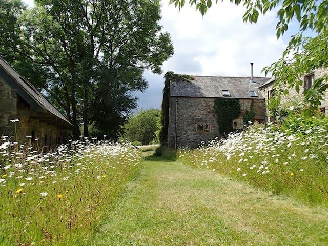 Dartmoor Farm Cottage Widecombe - Widecombe in the Moor - Hus