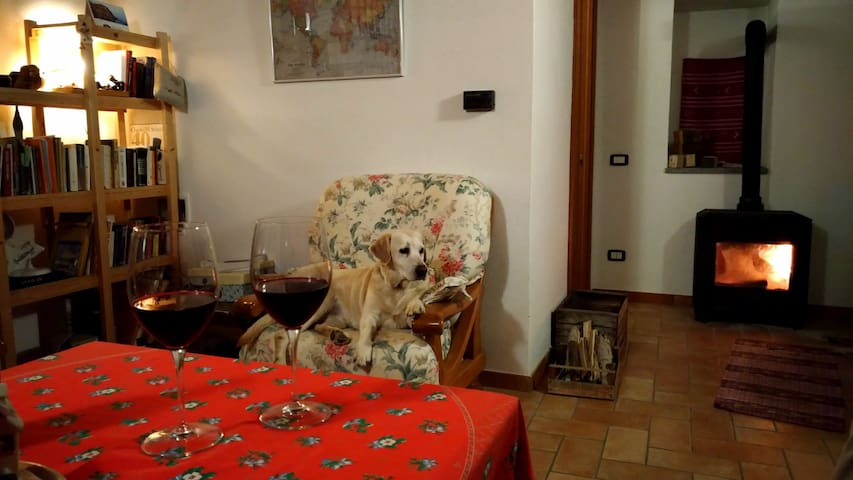 Tiny and cosy country house with swimming pool. - Casasco - Talo