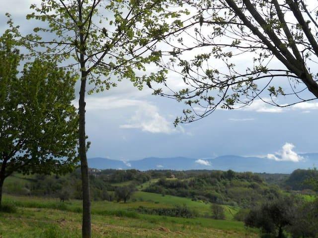 Casale fra le colline dei ciliegi! - Celleno - 獨棟