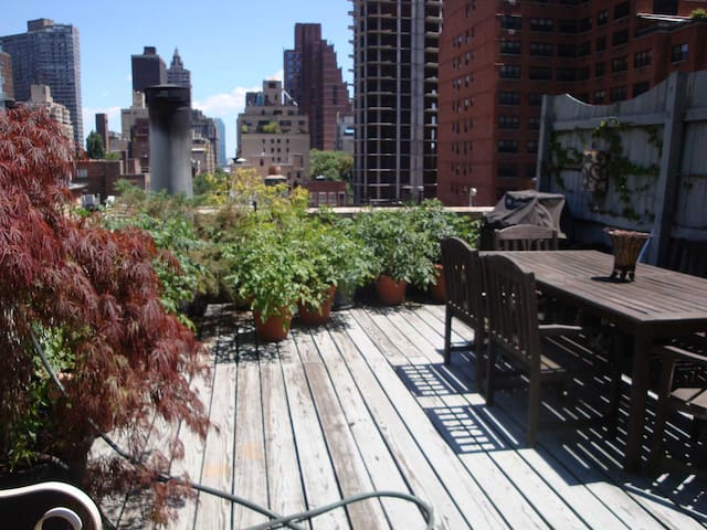 Penthouse Studio East 50s Terrace - New York - Apartmen