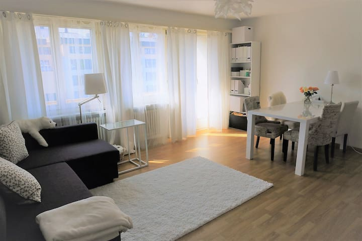 Cozy apartment - Brugg - Byt