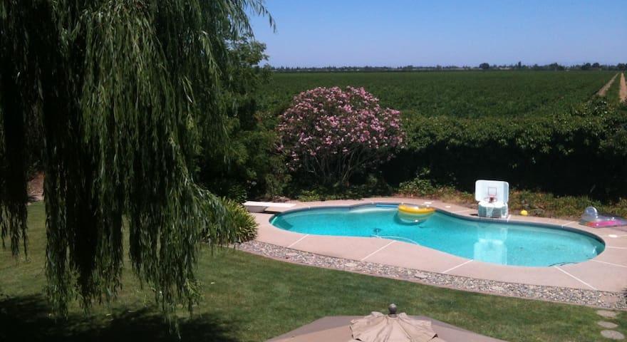 Vineyard Charm Close to Town private bath - Lodi - Maison