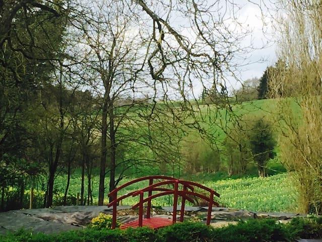 du Perche aux châteaux de la Loire - Ceton - Appartement