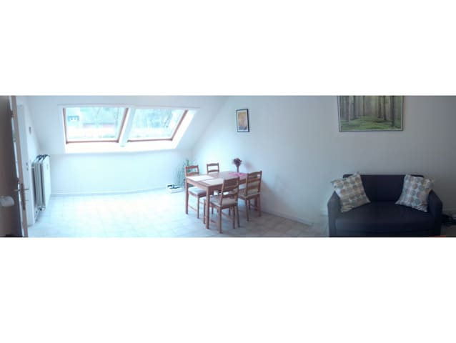 Nice & cheap room in Leuven, quiet, parking avail. - Leuven - Huoneisto