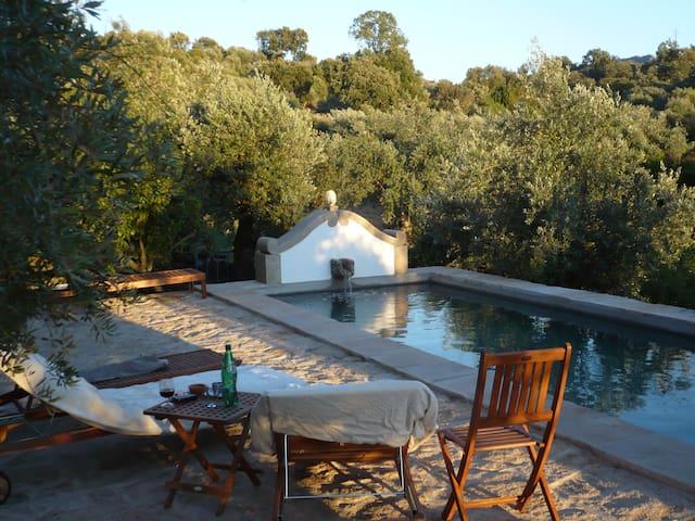 Quinta in a historic town w. pool - Castelo de Vide - Huis