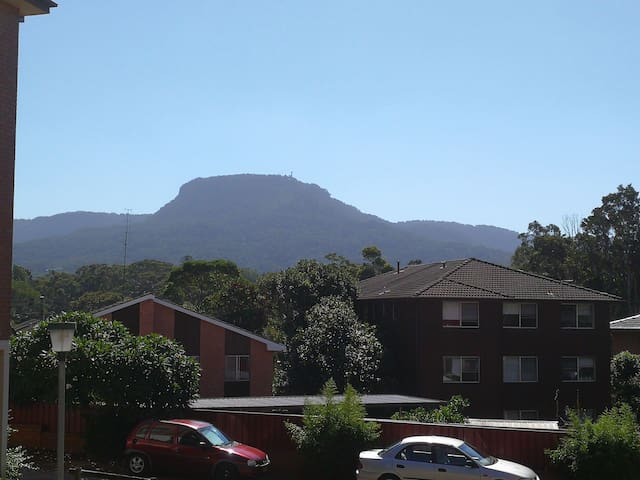 Clean modern bed room in town - Wollongong - Appartement