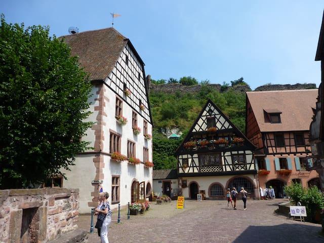Sweet home in the old Kaysersberg - Kaysersberg - Casa