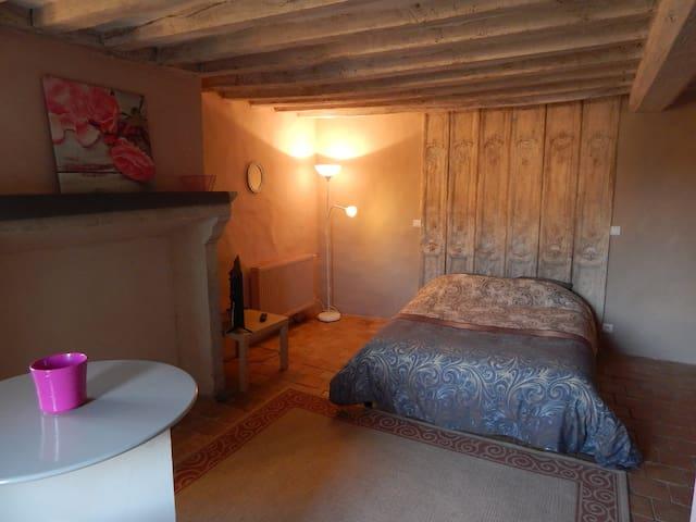 Studion meublé de caractère - Domfront-en-Champagne - Appartement