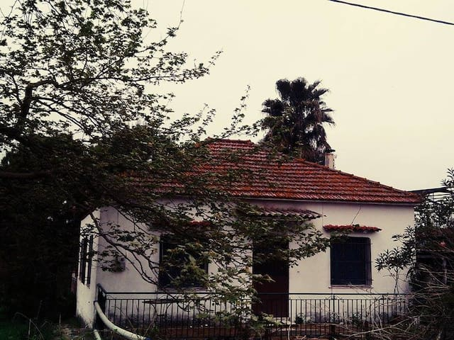 "Old Traditional,greek farm house in ""Anemomylos"" - Messinia"