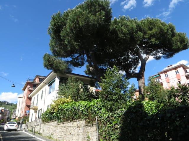 House with garden 100mts from sea - Lerici - Appartement