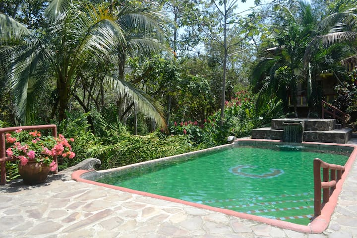 Artist's Home in Paradise - Quepos - Ev