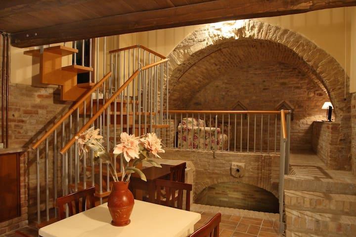 Elegante appartamento - Monteprandone - Appartement
