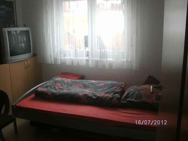 A samll room in Ingelheim - Ingelheim am Rhein - 一軒家