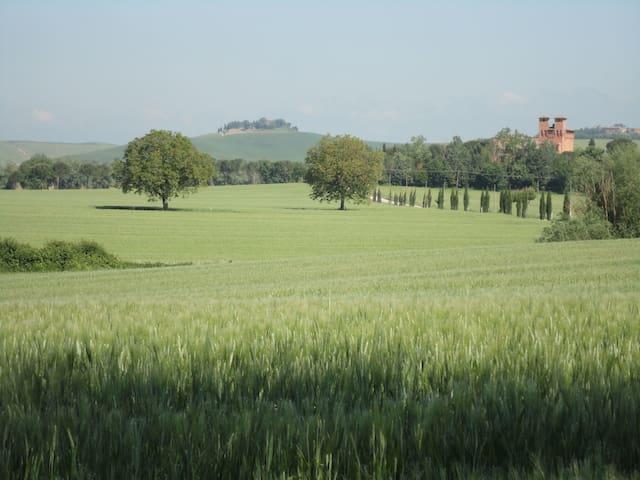 Castello di San Fabiano Wedding Venue - Monteroni D'arbia - Castle