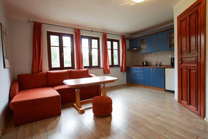 Apartment 2 - Vila near Forests - Chřibská - Daire