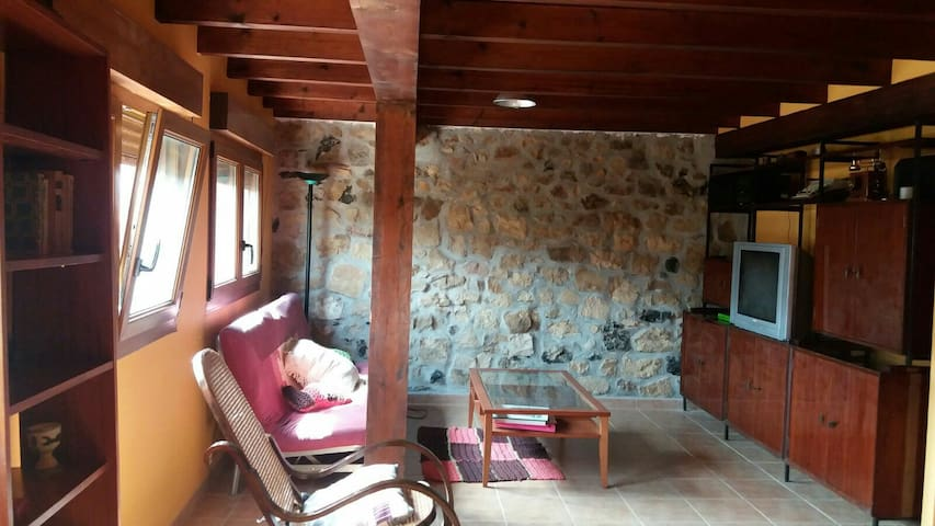 Huge 3 storey Stone house in natural area! - Rasines - Huis