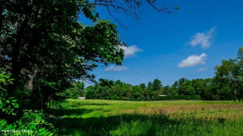 Farm House Experience - Berkley - Haus
