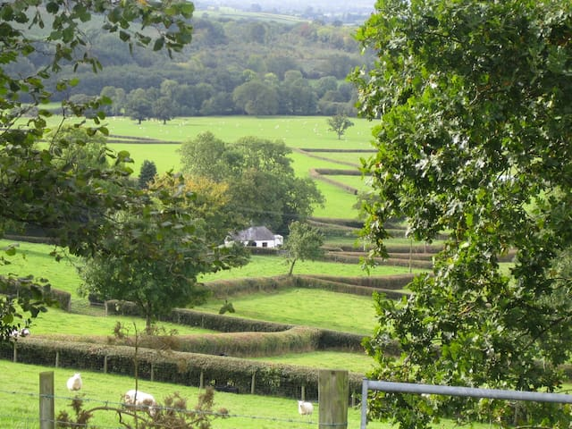 Secluded 17th Century  Lodge  near Brecon Beacons - Carmarthenshire - Casa