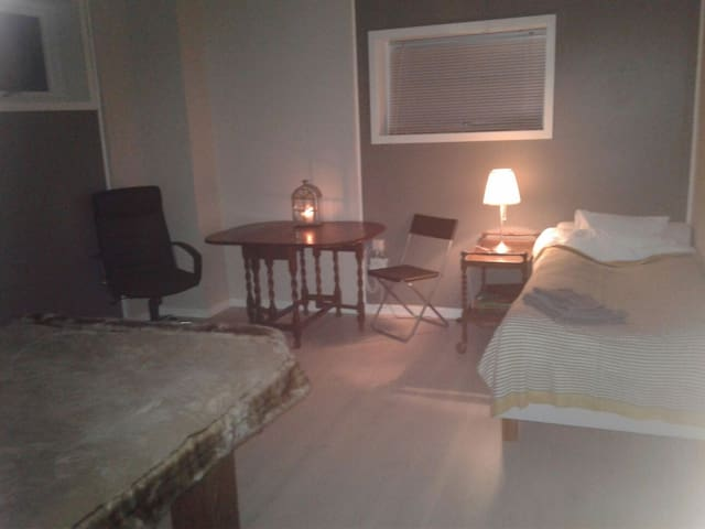 3. Comfortable big bed room close to Oslo airport! - Jessheim - Vila