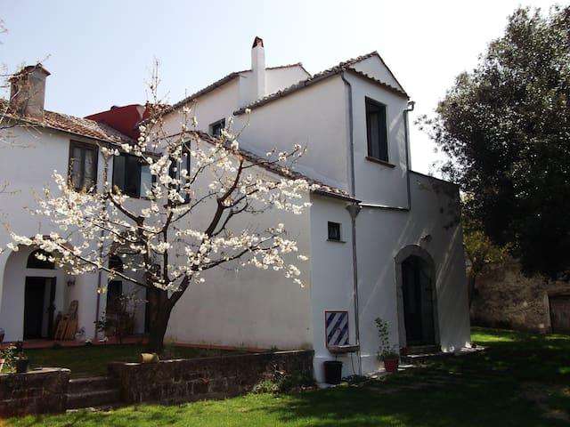 Villa Mimosa- Un angolo di paradiso - Calvanico - 別荘