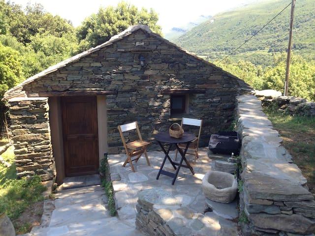 Studio - Maison typique de village - Sisco - Casa