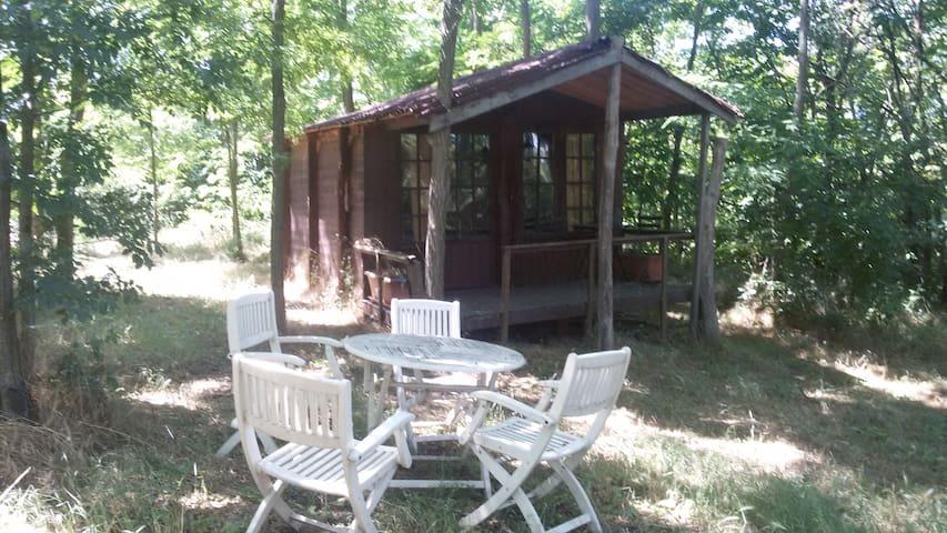 Wooden cabin on an Italian hilltop - Spigno Monferrato - Casa de campo