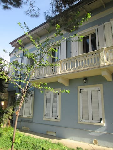 B&B ILPASSITOCALUSO HAVE ANICE TRIP - Caluso - Bed & Breakfast