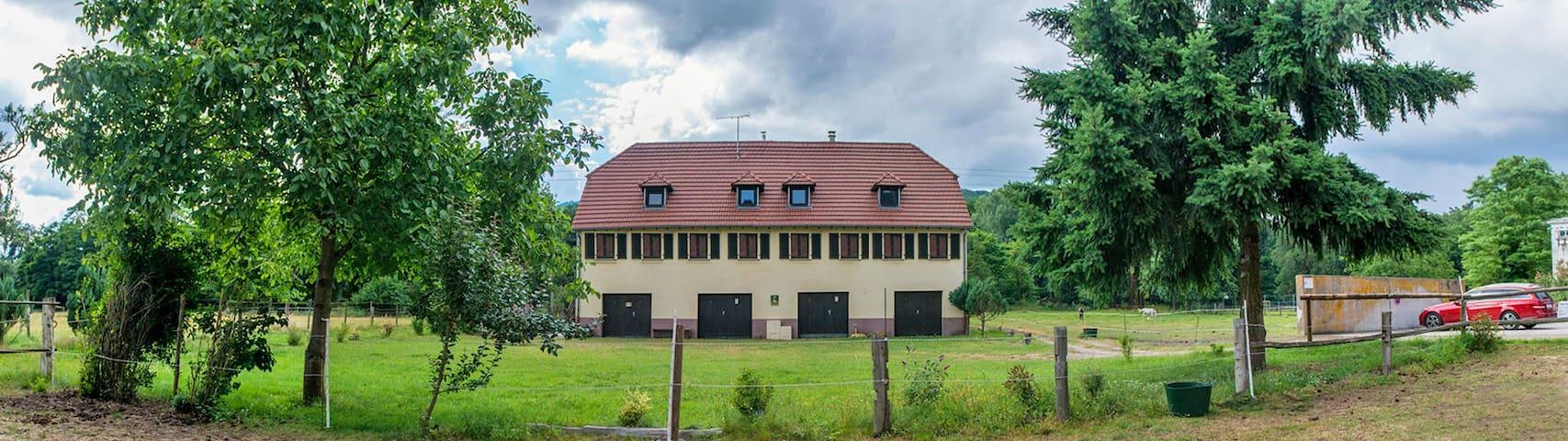 Emeraude de La Forge - Wintzenheim - Ortak mülk