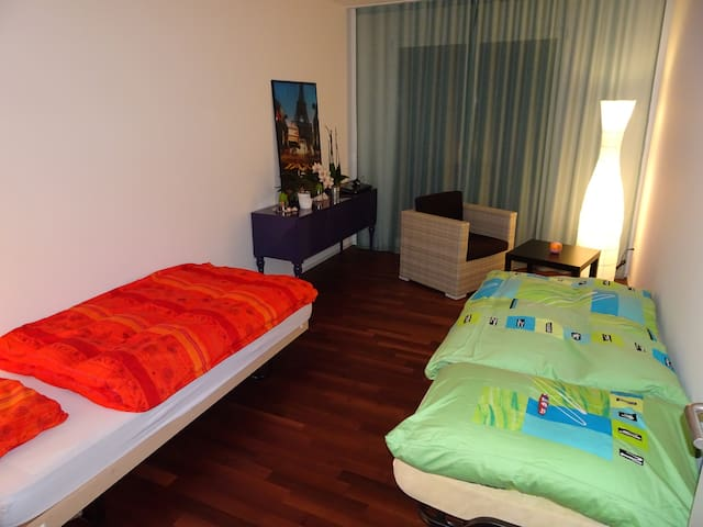 Cozy place in a quiet area with private bathroom - Volketswil - Appartement