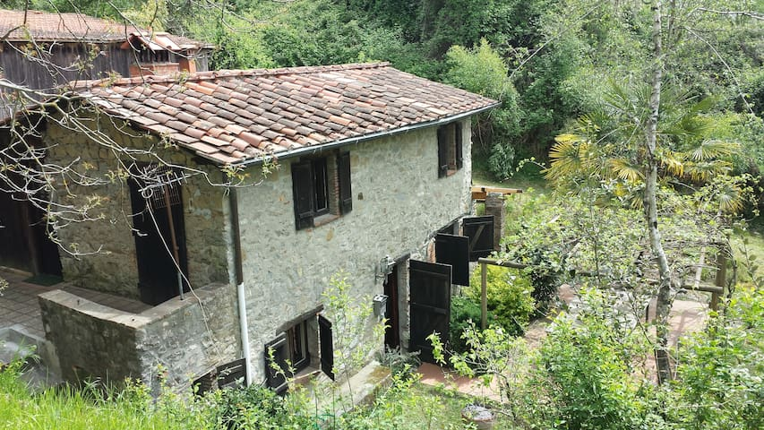 Tuscan cottage  in fabulous setting - Lucca - Hus