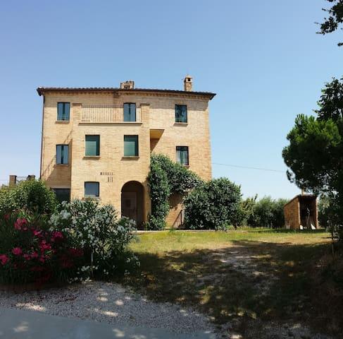 A casa di NONNA PINA - Castignano - Hus