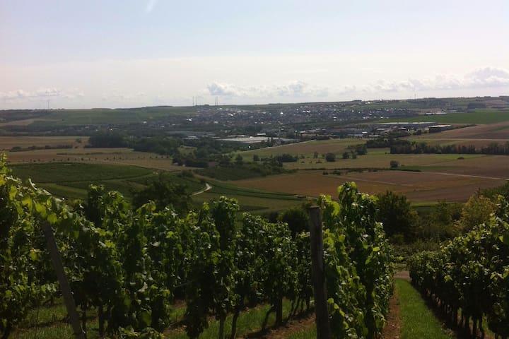 Wohnen auf dem Weingut/ Rheinhessen - Essenheim