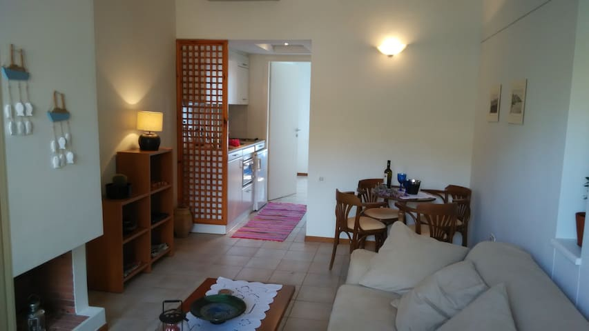 House with a yard in olive groove - Sitia - Casa