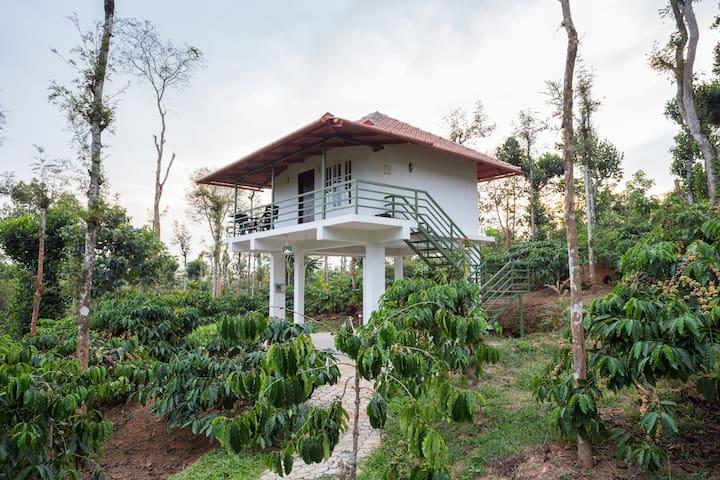 The Suvistara Wayanad -RIDHI Deluxe - Wayanad - Villa