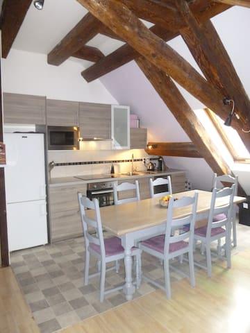 Charmant Duplex typique Alsacien - Kaysersberg - Appartement