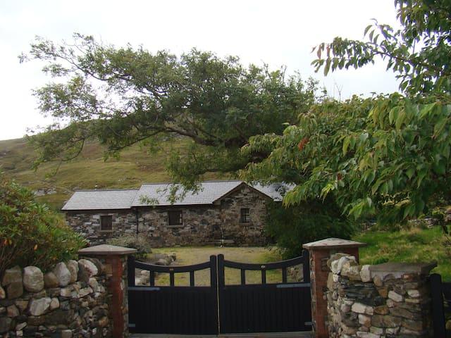 Gortrusheen Cottage - Galway - Kulübe