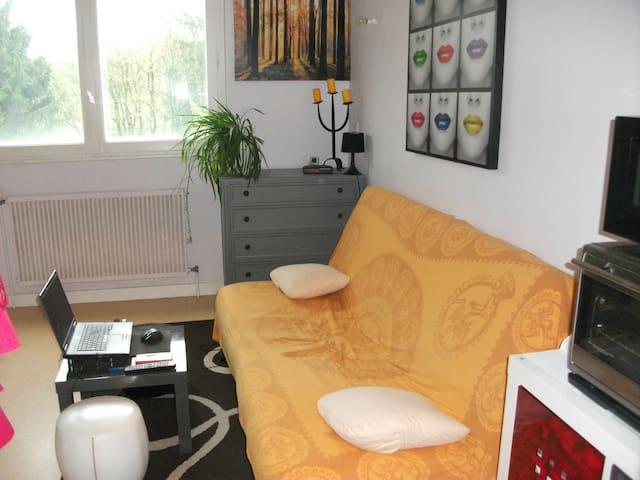 studio tout équipé à 15 km de BOURG EN BRESSE - Villemotier - Apartamento