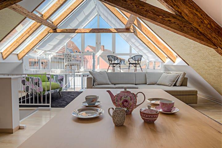 Top MAIN-Loft mit 60qm Dachterrasse - Haßfurt - Loft