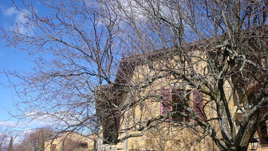 Belle maison en pierres dorées - Le Bois-d'Oingt - Bed & Breakfast