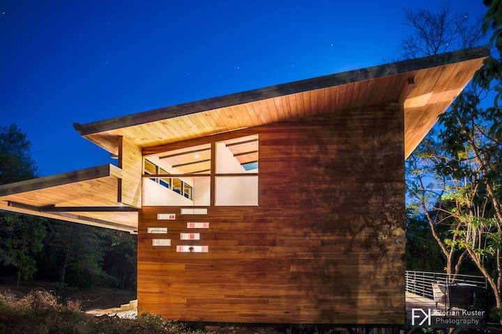 Organic - contemporary Loft House - San Mateo - Dom