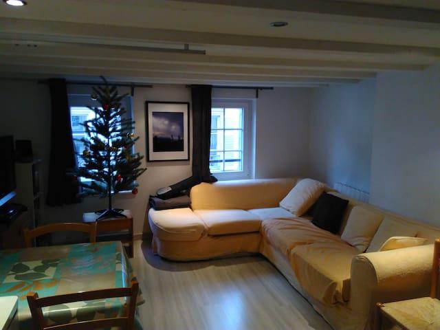 Duplex avec canapé de charme, Metz Centre - Metz - Huoneisto