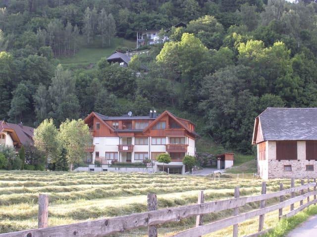 Vacanze in relax sui monti Nock - Bad Kleinkirchheim Zirkitzen - Daire