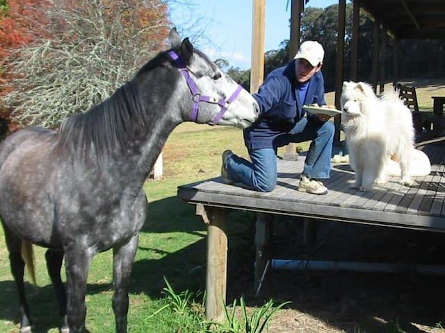 Farmstay Kangaroo Valley Australia - Kangaroo Valley - Departamento