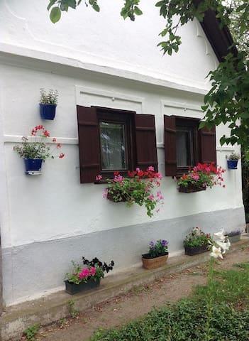 Peace and silence in a 100 year-old house - Jobbágyi - Bungalov