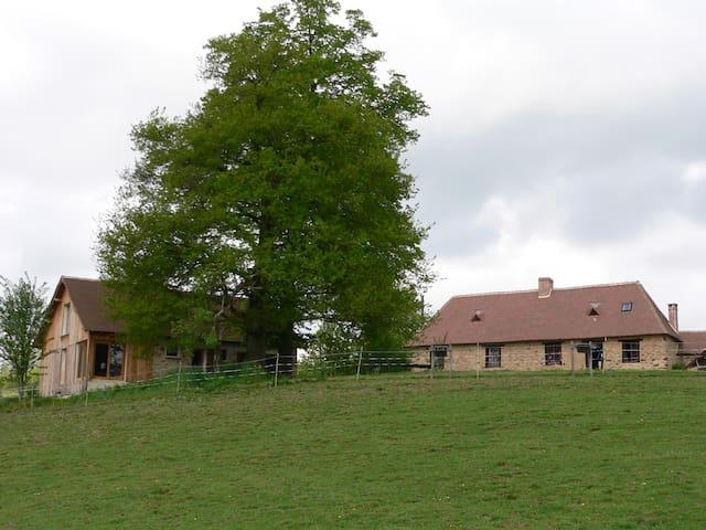 Gîte à la ferme sur le chemin de Compostelle - Saint-Germain-les-Belles - Haus