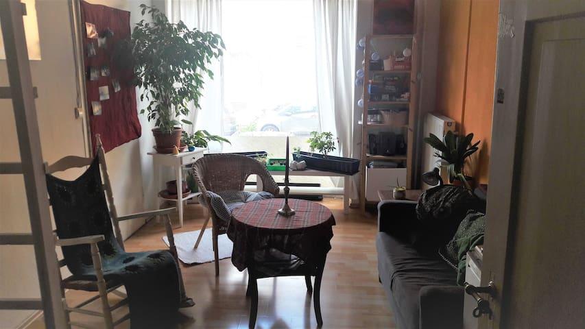 Gemütliches Zimmer direkt am Seerhein - Konstanz - Apartamento