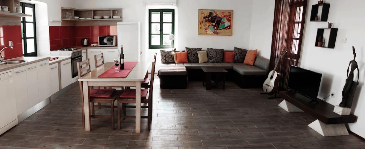 Artistic Apartment on Pašman Island - Pašman - 公寓