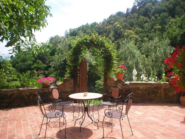 Tuscan olive farm, apartment - Massa e Cozzile PT - Appartement